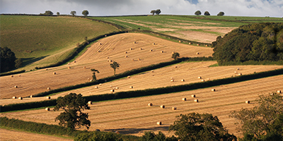 Westminster Insight's Future of British Farming Conference 2020