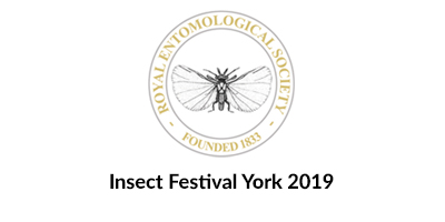 Join us at the Insect Festival 2019