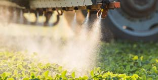 European Union Announced That It Will No Longer Permit Sales Of Chlorpyrifos