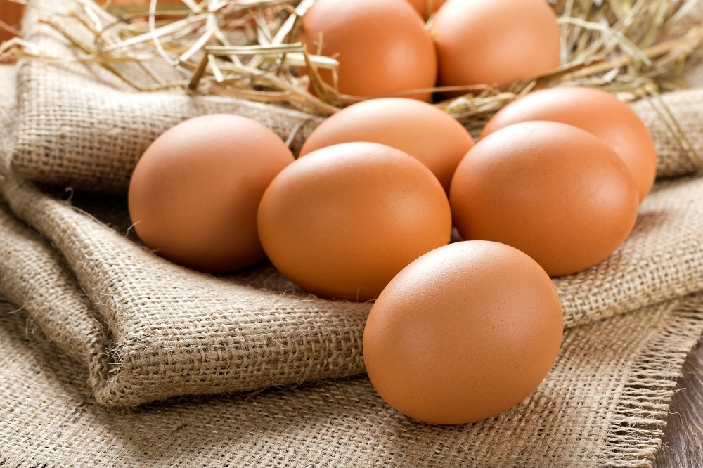 FSA find no evidence of fipronil in eggs in UK as Germany recalls contaminated Dutch eggs in fipronil scare