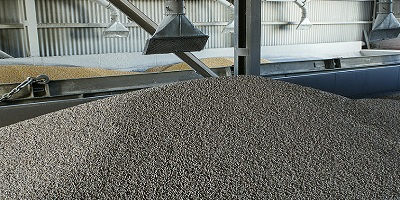 Developing sustainable sources of animal feed