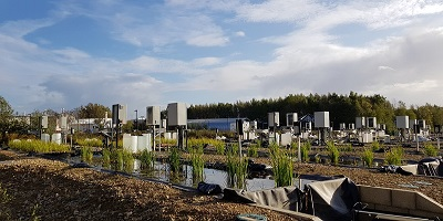 Making mesocosm studies fit for the future of pesticide testing
