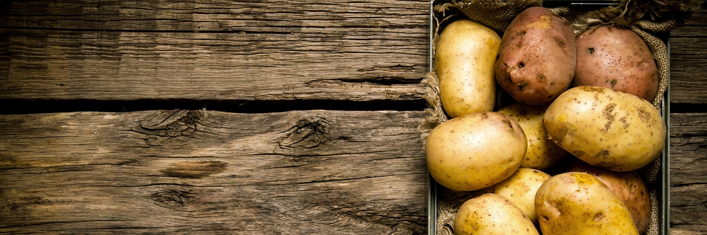 Rapid direct tuber test for virus in Potato (PVY + 3 Viruses)