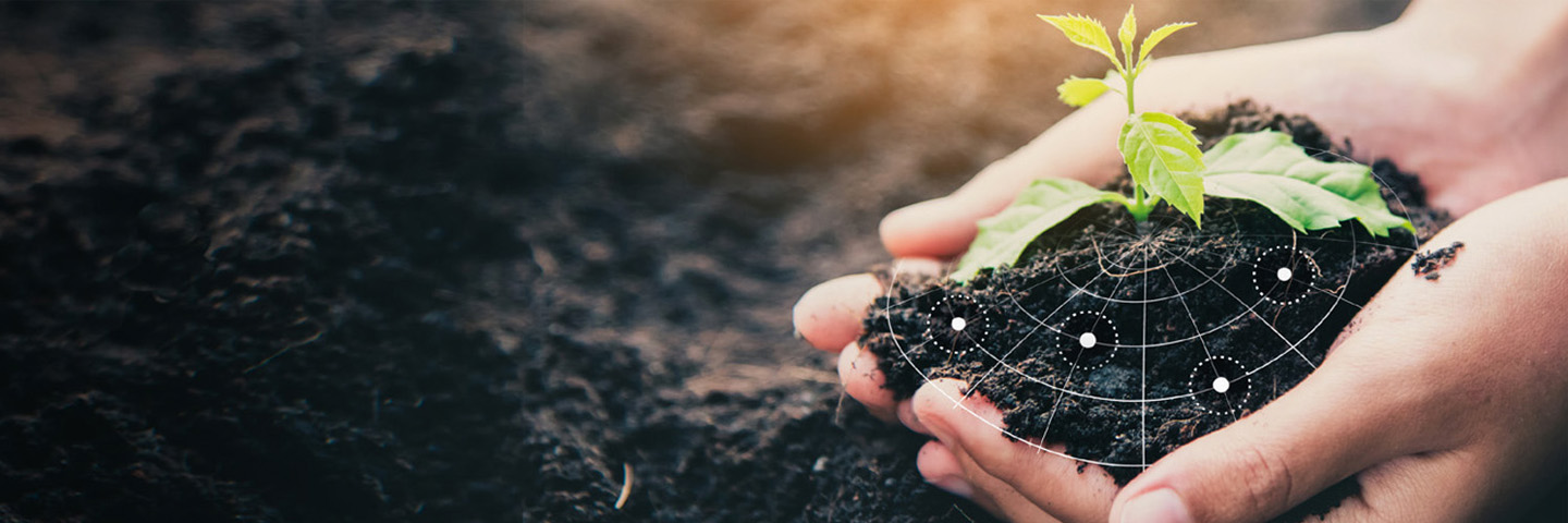 The Future of Soil is in your Hands