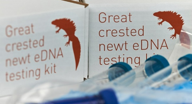 Great Crested Newt Testing Kits Image