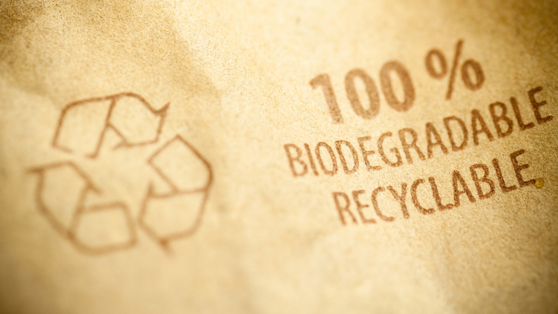 Bio-based packaging needs rigorous testing to avoid a new food safety threat