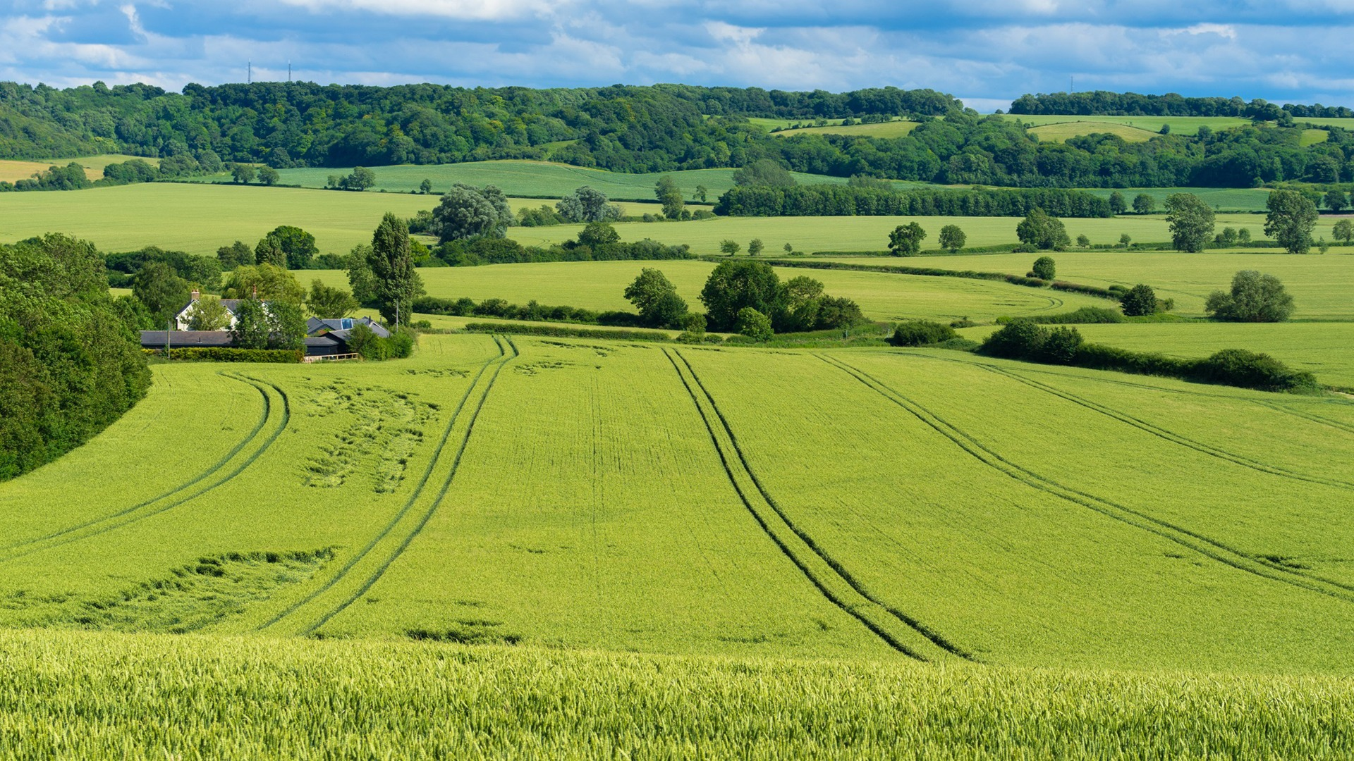The next food strategy must champion British standards and quality