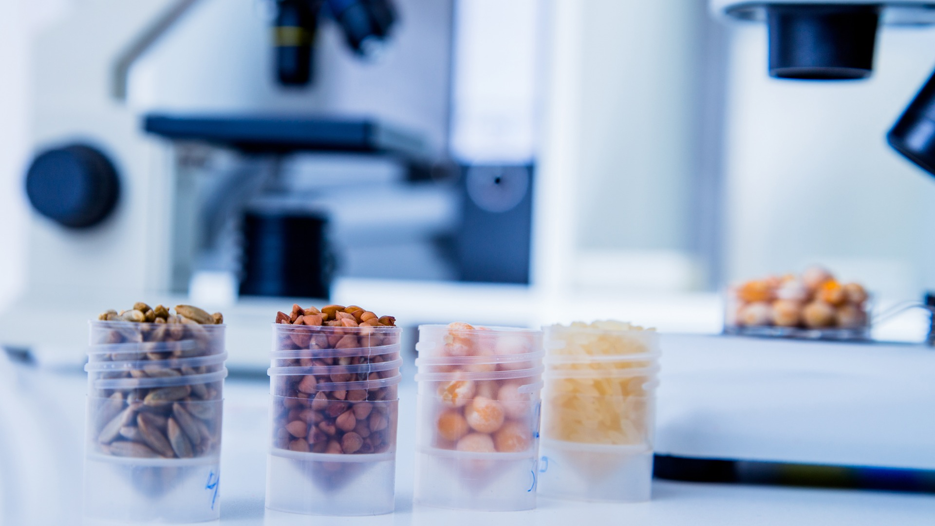 How future tools can predict toxicity in food and protect consumers