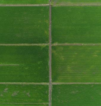 Field Arial Shot