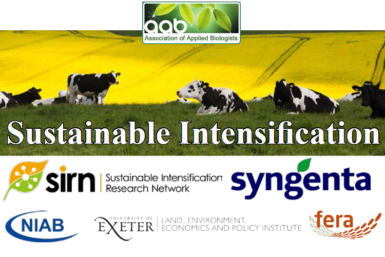 Sustainable Intensification Poster